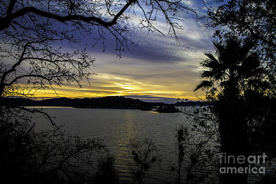 Clearlake Photograph - Early Morning by Mitch Shindelbower