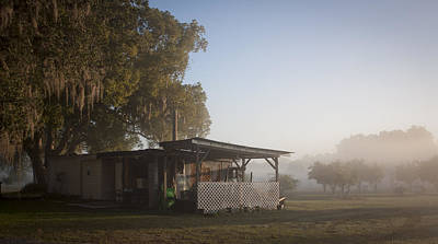 Early Morning On The Farm Art Print by Lynn Palmer