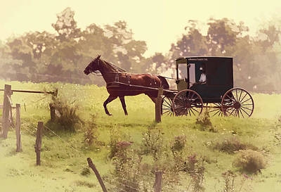 Amish Photograph - Early Morning Ride by Marcia Colelli