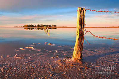 Barbed Wire Fences Photograph - Early Morning Salt Pan by Bill  Robinson