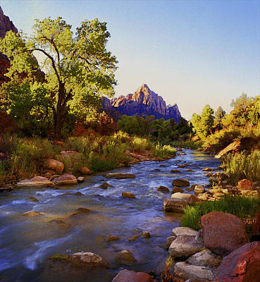 Photograph - Early Morning Sunrise Zion N.p. by Rich Franco