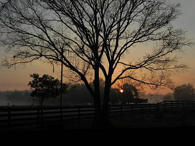 Photograph - Early Morning View From The Farm by George Pedro