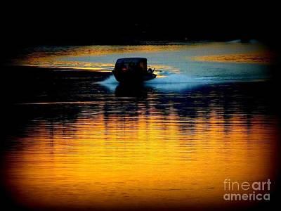 Photograph - Early Riser  by Susan Garren