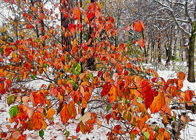 Digital Art - Early Snow by Kathleen Bishop