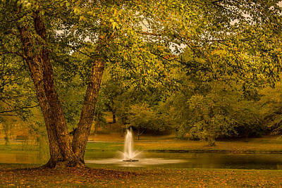 Photograph - Early Sounds Of Fall by Ludmila Nayvelt