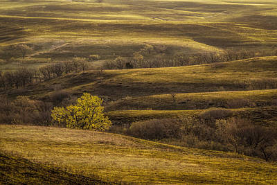 Photograph - Early Spring In The Flint Hills by Scott Bean