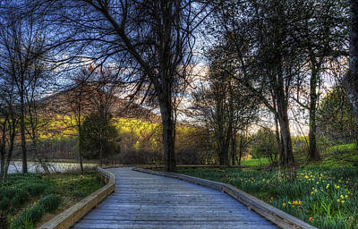 Photograph - Early Spring Walk by Steve Hurt