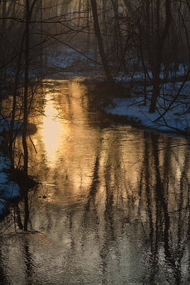 Photograph - Early Winter Morning by Karol Livote