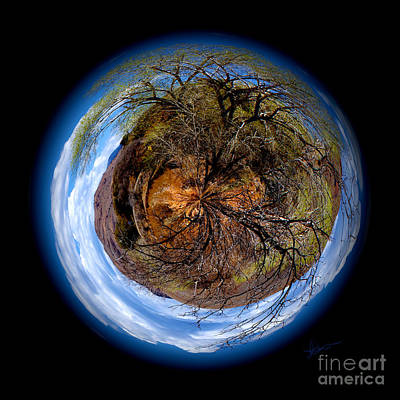 Photograph - Earth Art New Mexico by Vicki Pelham
