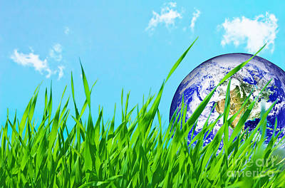 Global Photograph - Earth Globe In Green Grass by Michal Bednarek