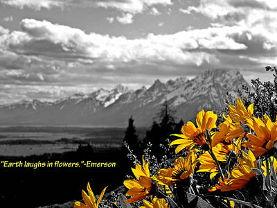 Hope And Change Photograph - Earth Laughs In Flowers by Dan Sproul