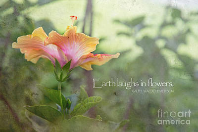 Photograph - Earth Laughs by Sally Simon