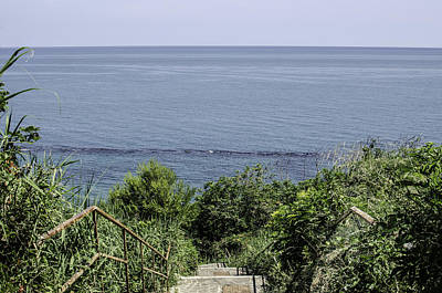 Photograph - Italian Landscapes - A Path To The Sea by Andrea Mazzocchetti