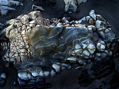 Photograph - Earthbones by Randal Bruck