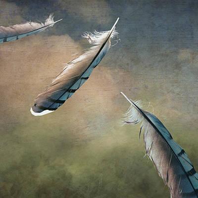Earthbound Art Print by Brenda Erickson