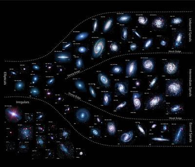 Earth's Neighbouring Galaxies Print by Nasa/jpl-caltech/k. Gordon (stsci) And Sings Team