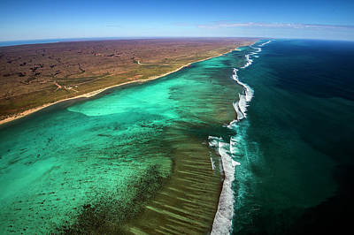 East And West Ningaloo Art Print by Migration Media - Underwater Imaging