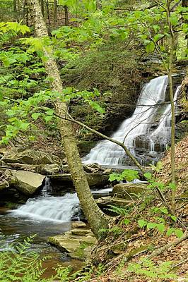 Photograph - East Branch Falls Lower Tier #1 by Joel E Blyler