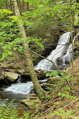 Photograph - East Branch Falls Lower Tier #1 by Joel E Blyler