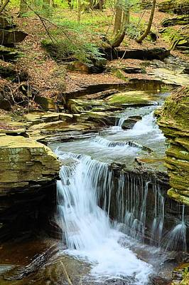 Photograph - East Branch Falls Middle Tier #1 by Joel E Blyler