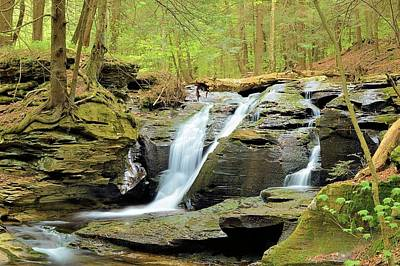 Photograph - East Branch Falls Upper Tier #4 by Joel E Blyler