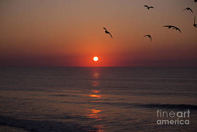 Photograph - East Coast Sunrise by Nelson Watkins