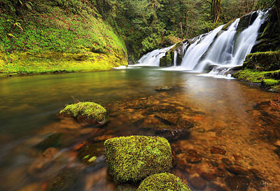 East Fork Coquille Falls Art Print