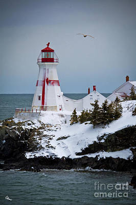Photograph - East Quoddy Head Lighthouse by Alana Ranney