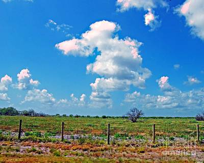 Photograph - East Texas View by Lizi Beard-Ward