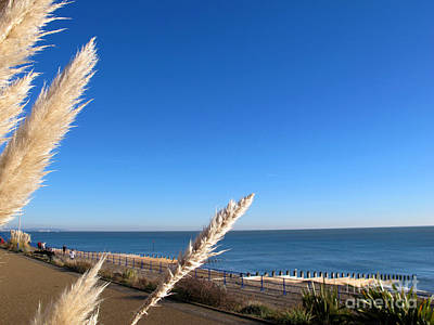 Photograph - Eastbourne Coast by Art Photography