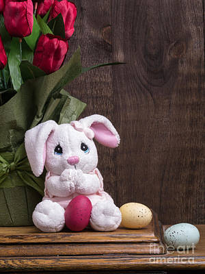 Bunny Photograph - Easter Bunny by Edward Fielding