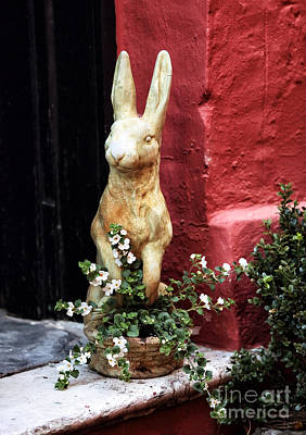 Red School House Photograph - Easter Bunny by John Rizzuto