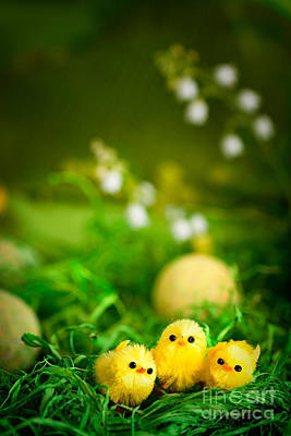 Happy Easter Digital Art - Easter Chicks by Mythja  Photography