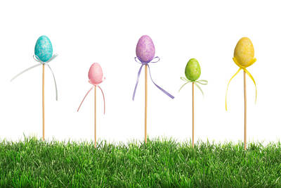 Photograph - Easter Eggs In Grass by Amanda Elwell