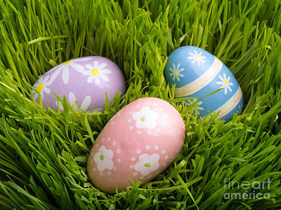 Bunny Photograph - Easter Eggs In The Grass by Edward Fielding