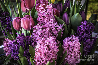 Photograph - Easter Flowers by Ronald Grogan