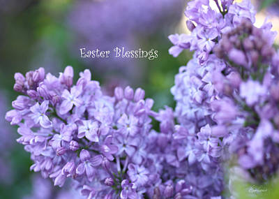 Photograph - Easter Lilacs by Diana Haronis