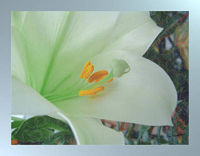Floral Digital Art Mixed Media - Easter Lily by Kae Cheatham