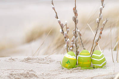 Decorating Photograph - Easter by Michal Bednarek