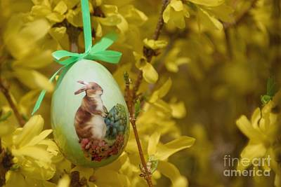 Photograph - Easter On It's Way by Living Color Photography Lorraine Lynch