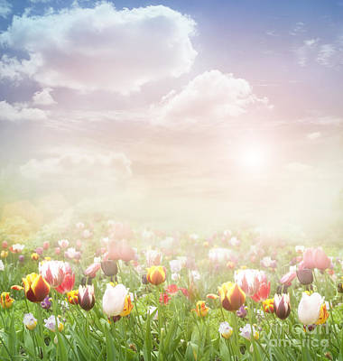 Mythja Digital Art - Easter Spring  Background by Mythja  Photography
