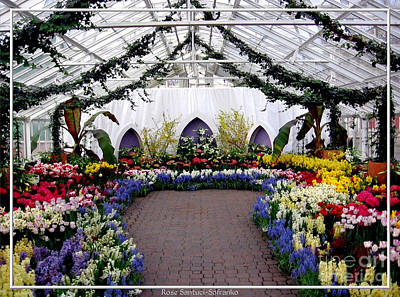 Red White And Blue Photograph - Easter Spring Flower Show At Botanical Gardens by Rose Santuci-Sofranko