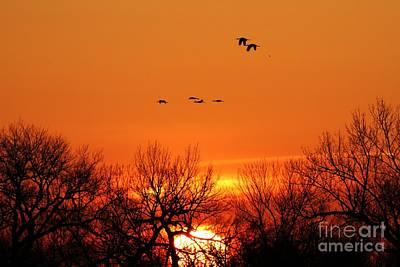 Photograph - Easter Sunrise by Elizabeth Winter