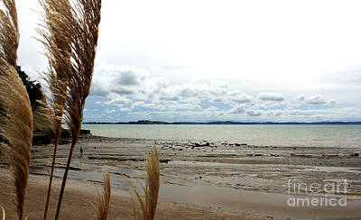 Eastern Beach Before Cyclone Lusi Art Print by Gee Lyon