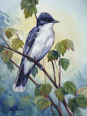 Painting - Eastern Kingbird by Janet Zeh