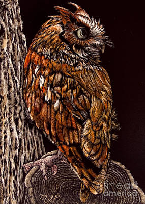 Painting - Eastern Screech Owl by Margaret Sarah Pardy