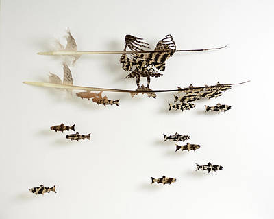 Osprey Mixed Media - Eat 9 by Chris Maynard