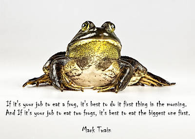 Eat Frog Art Print by John Crothers