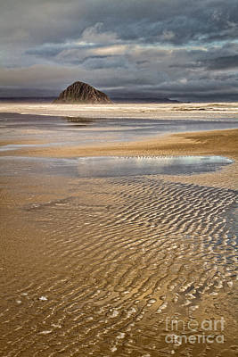 Photograph - Ebb Tide by Alice Cahill