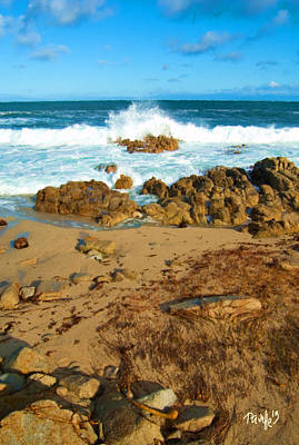 Digital Art - Ebb Tide - Pacific Grove Ca by Jim Pavelle